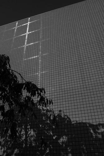 niigata monochrome 47