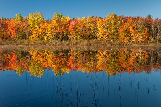 Ed Post - Thornton Lake