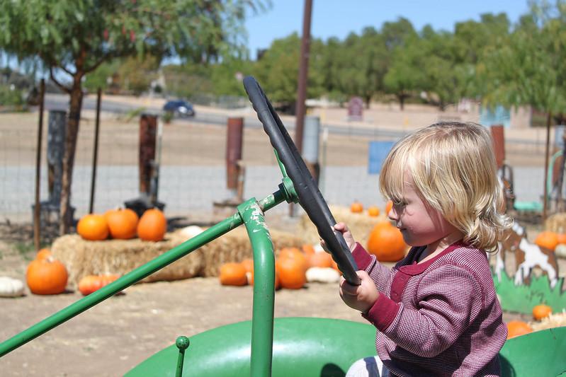 Pumpkinpatch-31.jpg