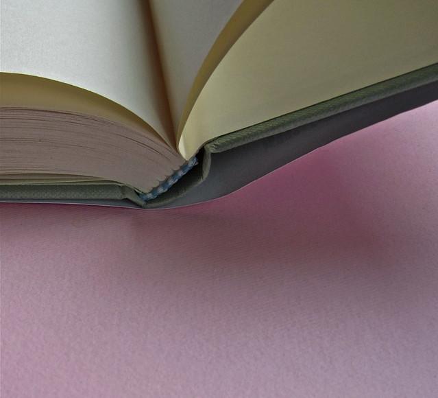 Alfabeto Poli, a cura di Luca Scarlini. Einaudi 2013. [resp. graf. e iconograf. non indicata]. Fotog. di cop.: ritr. b/n di P. Poli di G. Harari. Tagli inferiori (part.), 1