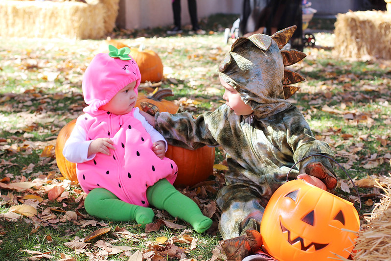 Pumpkin Festival 2013