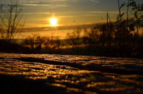 alps sunrise schweiz switzerland bank jura kurhaus sonnenaufgang solothurn weissenstein