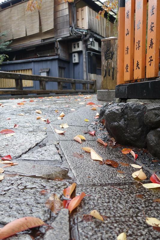 京都 2013.11.15