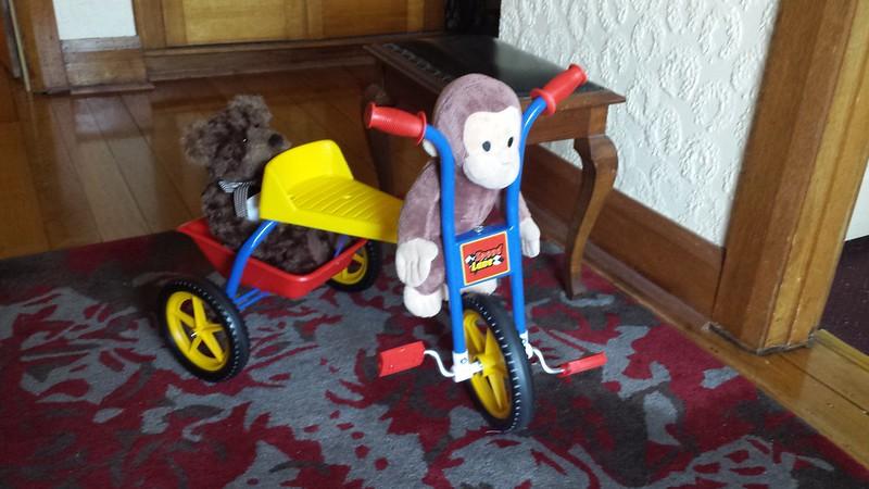 Monkey Driving Teddy Bear
