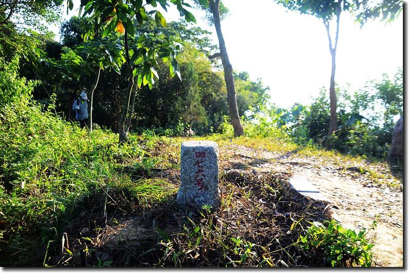 人頭山三等三角點(#476 Elev. 390 m) 1