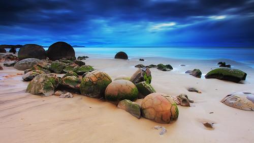 new beach island south zealand otago moerakiboulders koekohi