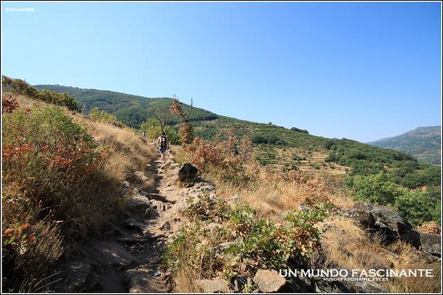 Senda de subida hacia la ruta. Vista del Valle del Jerte.
