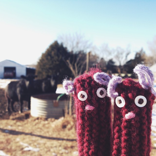 Fingerwarmers learn about life on the farm. #heycow #ricefieldcollective