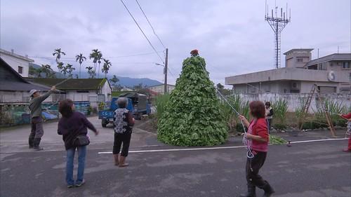 芥菜聖誕樹。