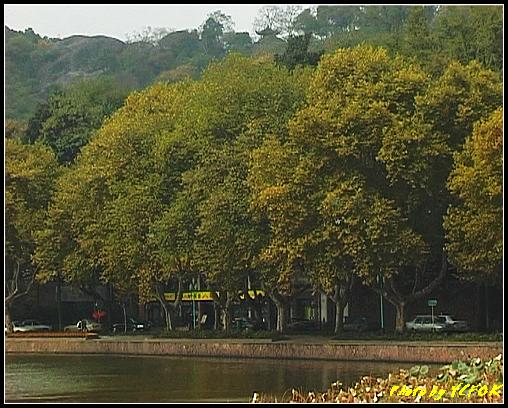 杭州 西湖 (其他景點) - 125 (從白堤上看北裡湖畔及北山路)