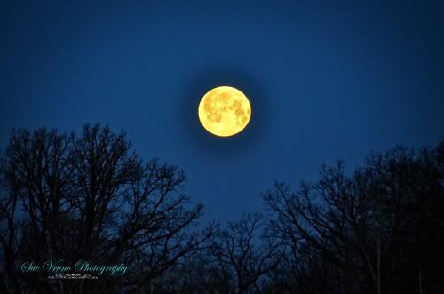 moon eclipse fullmoon lunareclipse bloodmoon