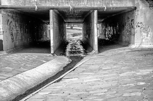 The drain #5.