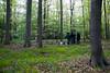 Hambacher Forst Wiederbesetzung-1