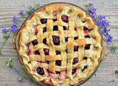 pie, blackberry pie, rhubarb pie, linzer torte, baked goods, food, dish, dessert, cherry pie, cuisine,