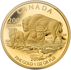 Bison at Home on the Plains coin