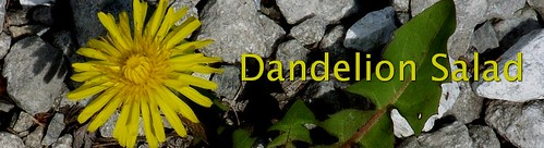 New Theme on Dandelion Salad