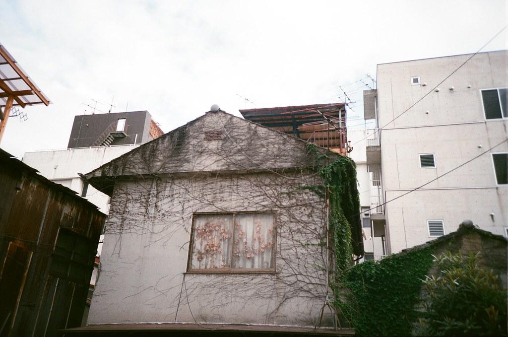 吳 Hiroshima, Japan / FUJICOLOR 業務用 / Lomo LC-A+ 被藤蔓包圍住的房子,我在拍的時候後面有一位大叔在看我拍什麼。  後來他發現我在拍藤蔓的時候,他出現了一副原來如此和欣賞藤蔓的表情。  唯一不足的是天氣陰陰的!  Lomo LC-A+ FUJICOLOR 業務用 ISO400 4898-0008 2016-09-26 Photo by Toomore
