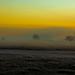 Bushy Park Landscape at Sunrise by leebanderson201067