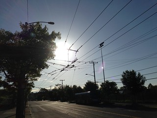Trolley Wires at Rainier Beach