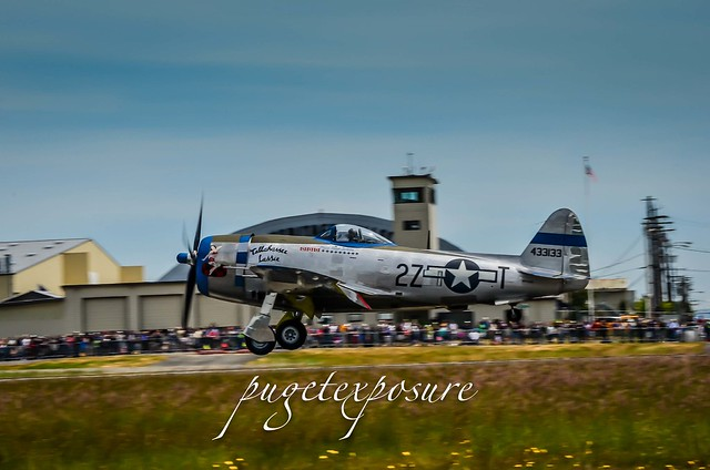 "HFC's P-47 Thunderbolt ""Tallahassee Lassie"""
