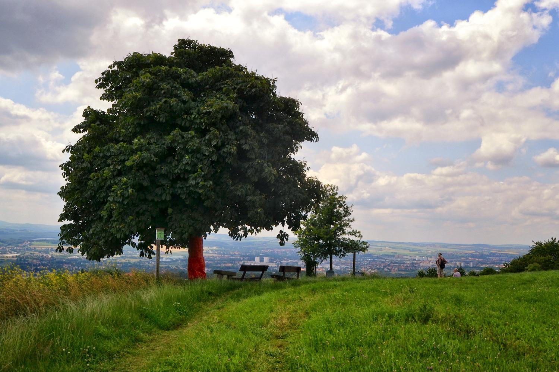 Im Schönfelder Hochland