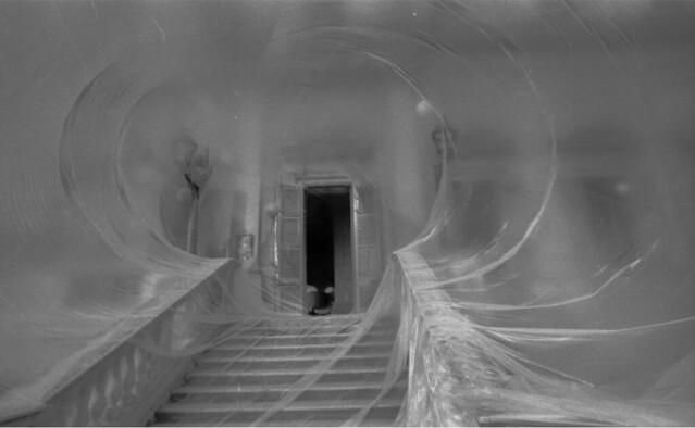 1978 Riappropriazione Villa Reale Monza