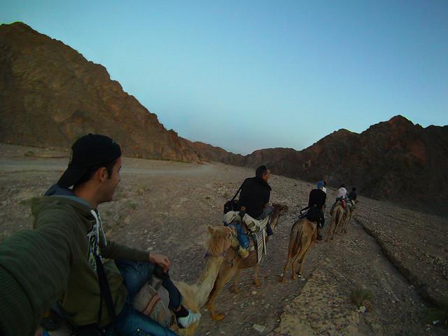 Paseando en la noche por el desierto