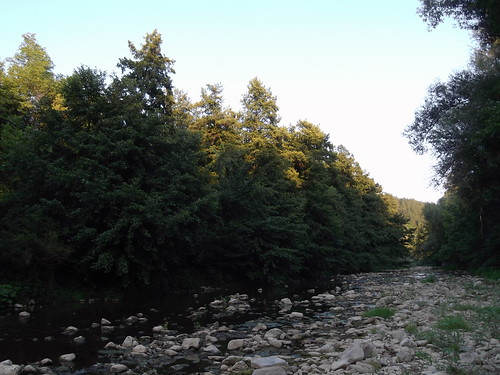 река дряновска камъни дървета залез цареваливада river dryanovska stones trees sunset sundown tsarevalivada fleuve pierres balkan arbres българия вода water eau herbe herbeverte grass трева summer лято été grandbalkan предбалкан bulgária ciel cielbleu sky небе bálcãs bulgaria balkans bulgarie балкани природа nature europa европа europe rural среднастарапланина centralstaraplanina coucherdesoleil bulgarien болгария