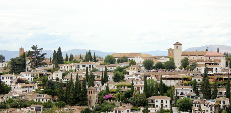 vestido-negro-Alhambra-(9)