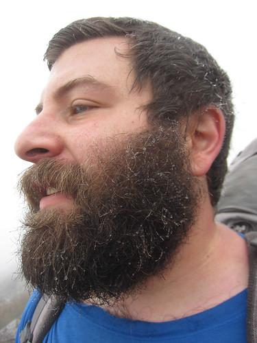 mist beard
