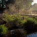 Dobbs weir, Hoddesdon Hertfordshire by Miche & Jon Rousell