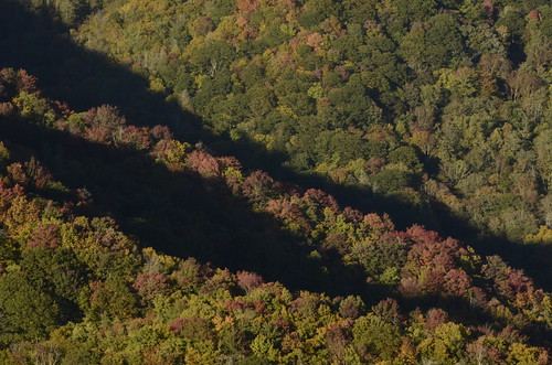 park autumn trees light sunset mountain mountains color colour tree green fall colors beautiful leaves yellow season golden nationalpark amazing nikon pretty colours afternoon seasons view tn tennessee gorgeous altitude south great southern national hour change late rays smoky overlook 18200 vr goldenhour greatsmokymountains lateafternoon astonishing greatsmokymountainsnationalpark easterntennessee 18200mm 18200mmvr d7000