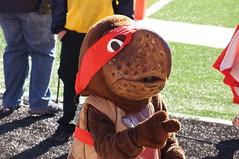 The University of Maryland mascot on the sidelines of Byrd Stadium