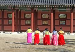 Joseon Afternoon Walk