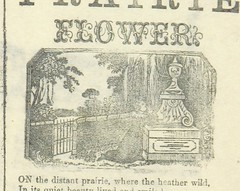 """British Library digitised image from page 1033 of """"A collection of ballads printed in London. Formed by T. Crampton"""""""