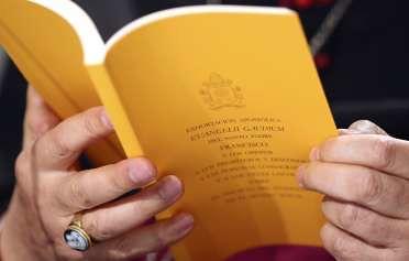 Evangelli Gaudium  (1)