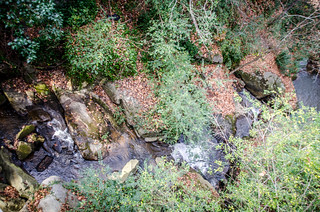 Pacolet Stream and Waterfalls