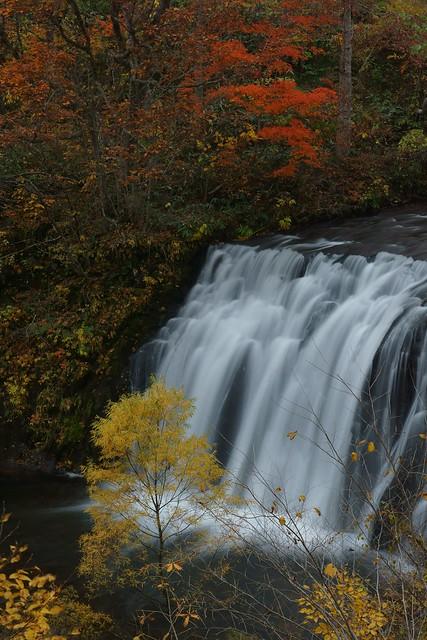 写真_「秋の流れ」