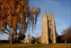 Evesham Abbey in Autumn by Canis Major