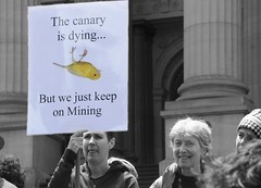 The canary is dying... | No coal export rally 10 Dec 2013