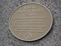 Photo of Robert Brown yellow plaque