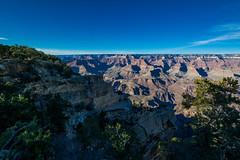 Grand Canyon National Park Rim