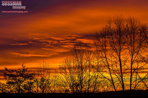 trees sky cold silhouette clouds sunrise georgia colorful unitedstates gainesville freezing lakelanier hallcounty thesussman sonyslta77 sussmanimaging