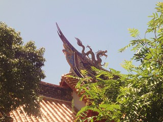 Nagasaki Dragon