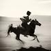 The year of the Wooden Horse by Hengki Koentjoro