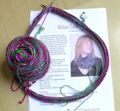 Willow1a