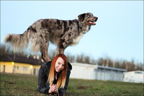 Triki naših psov 12545023263_3b7b0d1e5d