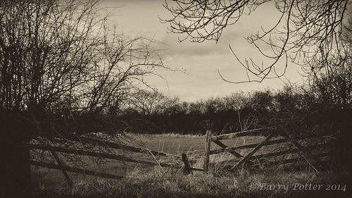 landscape blackwhite nikon yorkshire eastyorkshire barrypotter valeofyork yabbadabbadoo nikond90 barrypotternet nikkor28mm300mm3556ed edenmedia barrypotteredenmedia