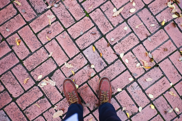 Boots & Leaves