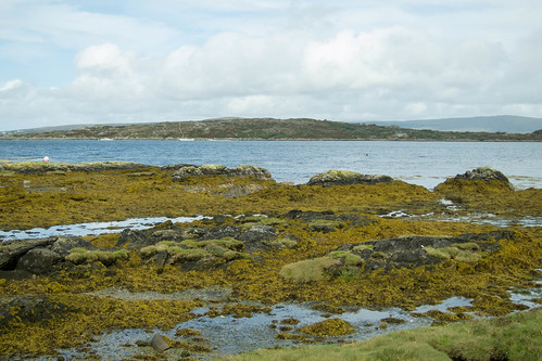 A view of Inishbarra